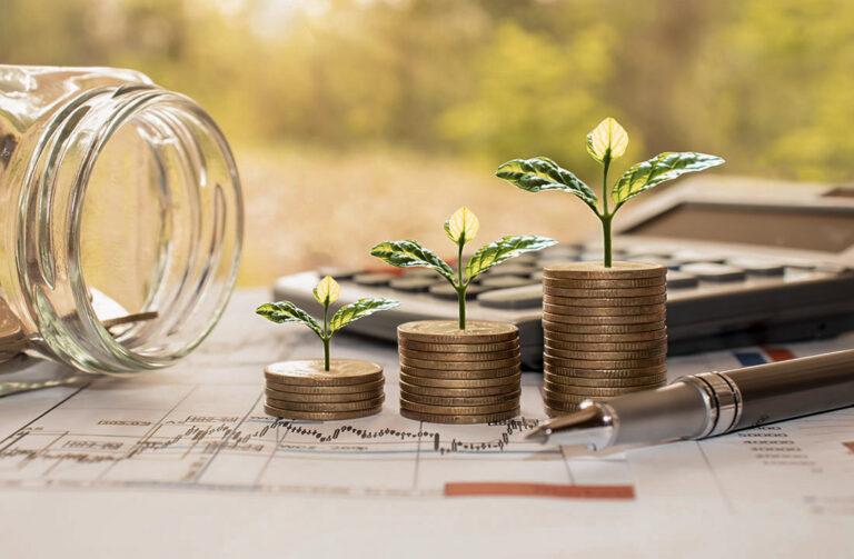 Münzen aus denen grüne Pflanzen wachsen